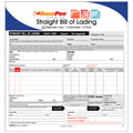 ROADPRO RPBOL-5 Carbonless Straight Bill of Lading Sheets with Triplicate Sets - 5-Pack